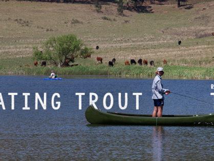 Self Isolating Trout - TCC Leg 3