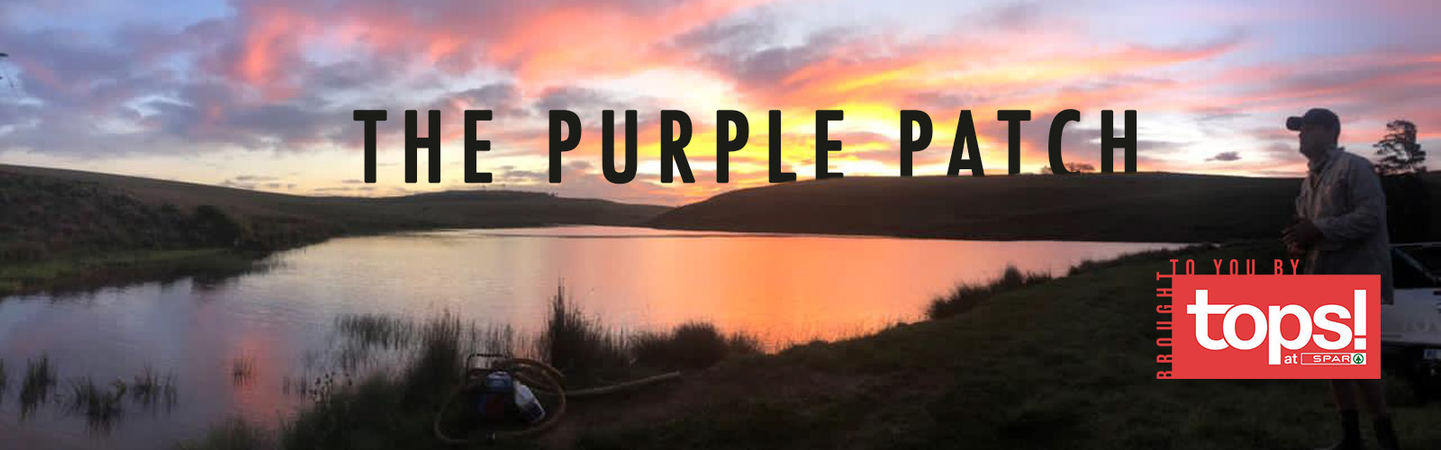 The Purple Patch